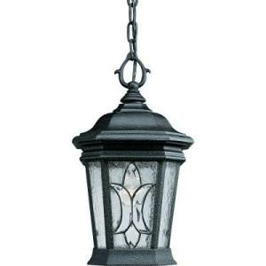 Progress Lighting Cranbrook Collection Gilded Iron 1 light Hanging Lantern P5557 71