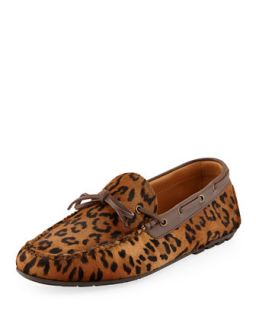 Leopard Printed Calf Hair Driver   Ralph Lauren Black Label