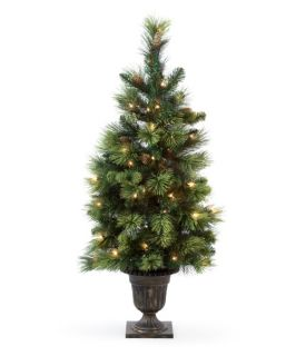 4 ft. Pre Lit Carolina Pine Entrance Tree   Christmas Trees