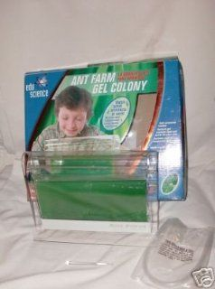 Edu Science Ant Farm Gel Colony with Illuminated Base Toys & Games