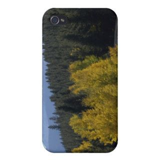 Colorado Rocky Mountain Railroad iPhone 4 Covers