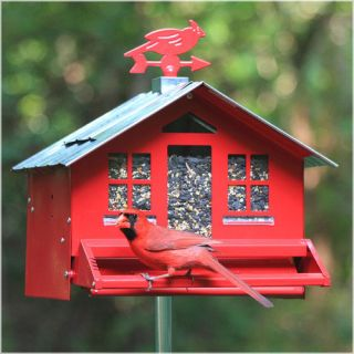 Perky Pet Squirrel Be Gone II Country Style Wild Bird Feeder Patio & Outdoor Decor
