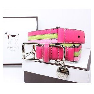 "COACH Striped Multicolor Leather Dog Collar with Engraveable Charm 60407 Limited Edition   Lime/Pink, Medium (13.5"" 16.5"")  Pet Collars"