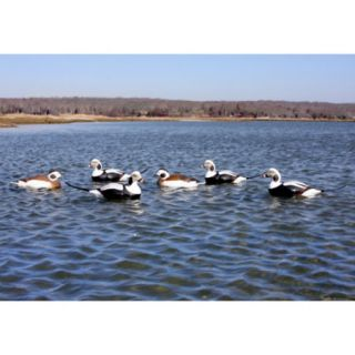 Avery Commercial Grade Long Tailed Duck Decoys 6 pk. 702956
