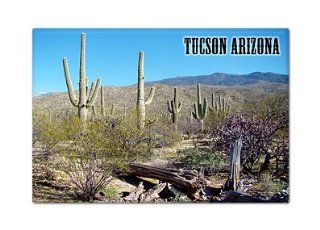 Tucson Arizona Saguaro Cactus Fridge Magnet  Refrigerator Magnets
