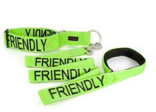 """FRIENDLY"" Color Coded Green Semi Choke Dog Collar & 4 Foot Leash Set (Known As Friendly) PREVENTS Accidents By Warning Others of Your Dog in Advance  Pet Collars"