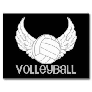 Volleyball with Wings Post Card