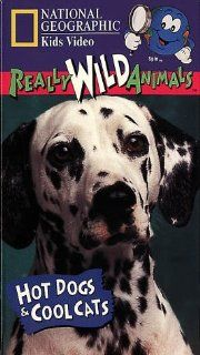 National Geographic's Really Wild Animals Hot Dogs and Cool Cats [VHS] Really Wild Animals Movies & TV