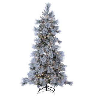 Lightly Flocked Snowbell Pine Pre Lit Full Christmas Tree   Christmas Trees