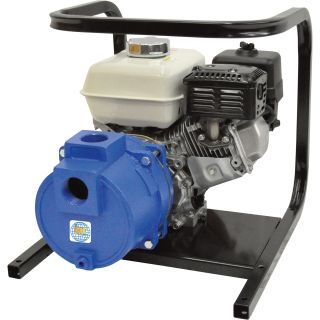 IPT Cast Iron Self-Priming Trash Water Pump — 2in. Ports, 11,000 GPH, 1in. Solids Capacity, 160cc Honda GX160 Engine, Model# 2TS5HCB  Engine Driven Full Trash Pumps