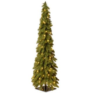 4 Foot Downswept Forestree with Clear Lights    National Tree Company