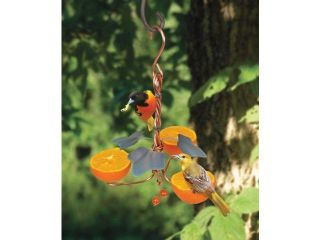 Songbird Essentials SEHHORTF Copper Oriole Triple Fruit Feeder with Ivy