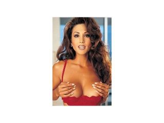 Shirley of Hollywood Chopper Lace Shelf Bra 324 Red 32
